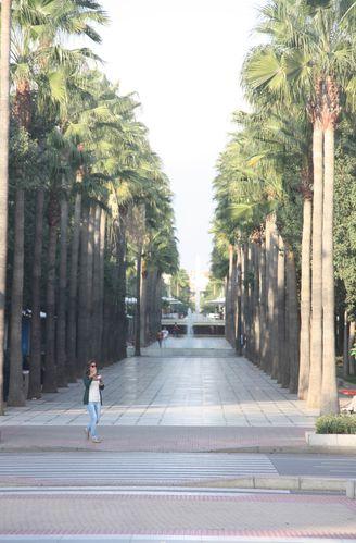 Almeria-3793-Avenida-de-Federico-Garcia-Lorca-jpg