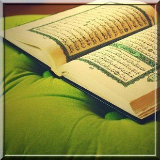 pondering over the quran pdf free