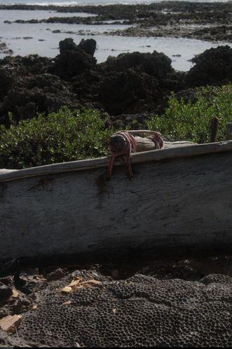 2010-Vanuatu-2-5352--531x800-.jpg