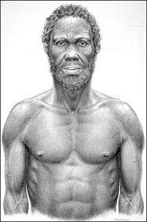 Homo-sapiens-idaltu.jpg