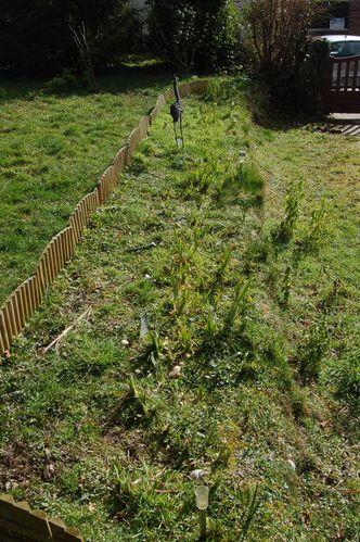 Nature-et-jardin-24-1536.JPG