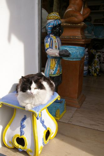 italie chat