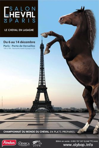 findus-salon-paris-detournement-parodie-findus-cheval.jpg
