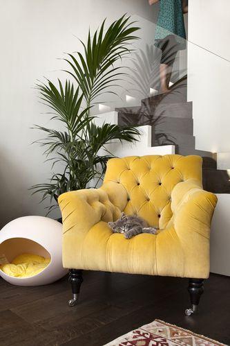 Fauteuil Marocain - Fauteuil design moutarde