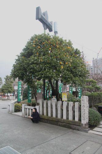Tokyo 4454