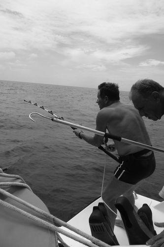 la pêche miraculeuse an mai