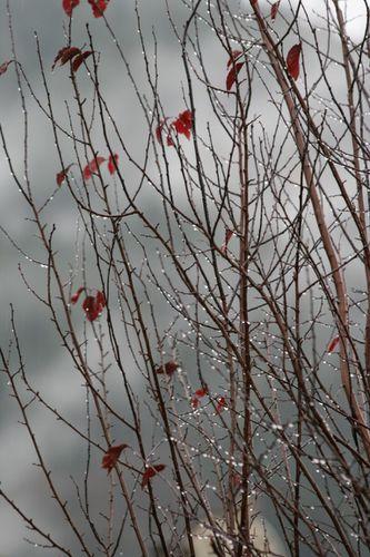 octobre-2010-0965--1280x768-.JPG