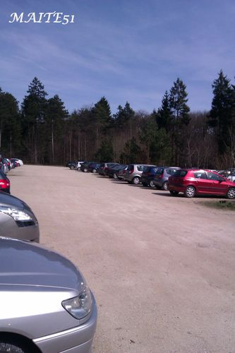 Arrivee-parking-des-Pins-faux-de-Verzy-14-04-2013.jpg