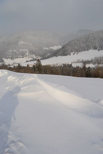 2012-02-haut-meaudret-0008-copie-1.JPG