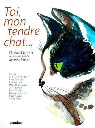 Toi-mon-tendre-chat-1.JPG