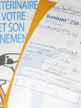dossier31-8233.jpg