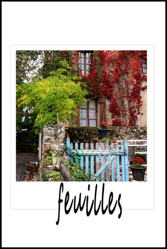feuille1