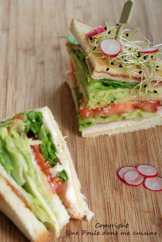 club-sandwich----.jpg