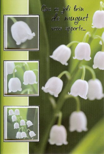 muguet-carte--0002.jpg