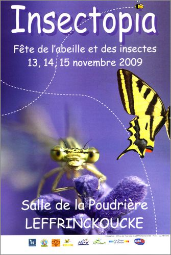 INSECTOPIA-AFFICHETTE.JPG