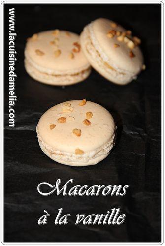 macaron-vanille--2-.JPG
