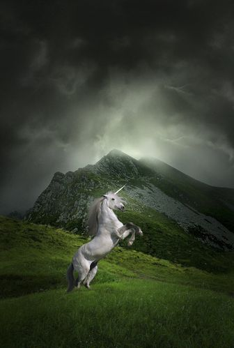 irish_unicorn_by_snofte-d2z25yi.jpg