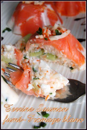 terrine saumon fr bl