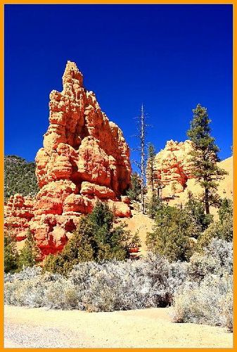 Red canyon 15