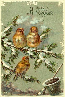 A Happy New Year Postcard