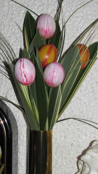 oeuf tulipe17