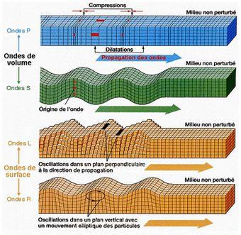 Schema 4 types d ondes