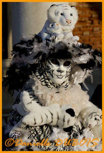 Carnaval Venise 2011 26