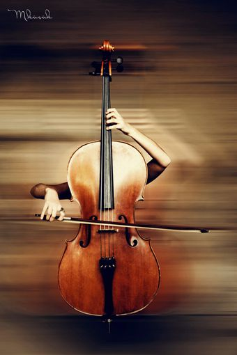 cello_body_ii_by_mustafakucuk-d35u35b.jpg