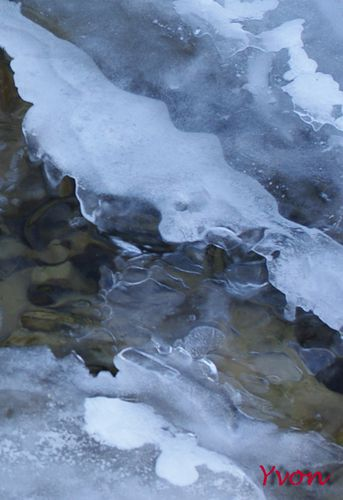 Froid-15