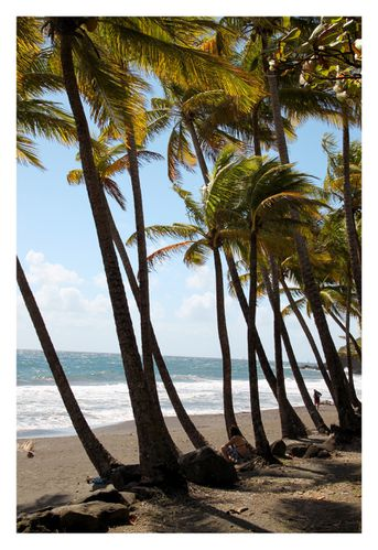 plage trois rivieres guadeloupe