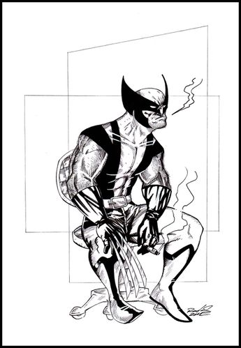Wolverine-sitting-CLEAN-NET.jpg