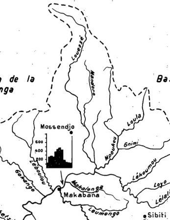 bassin-niari-louessé-affluent