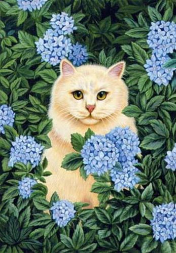 db_Brownd_Elizabeth_Persian_Cat_-_Blue_Hydrangea2.jpg