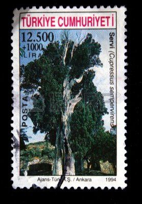 5325830-a-post-stamp-printed-in-turkey-and-show-high-old-tr.jpg