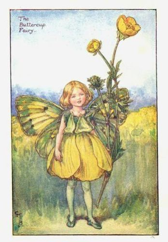 buttercup flower fairy