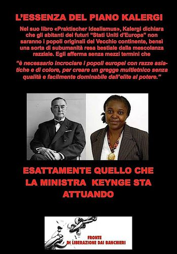 Essenza del piano Kalergi