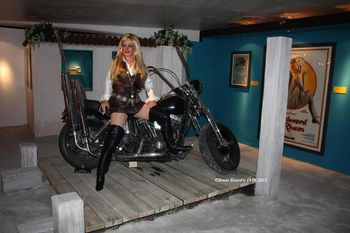 Brigitte BARDOT Expo -Golden Sixties- 2012