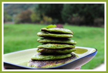 blinis-shrek 0011