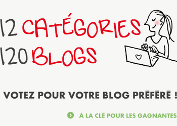 12-categories---120-blogs.png