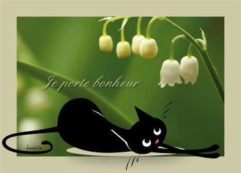 chat noir muguet