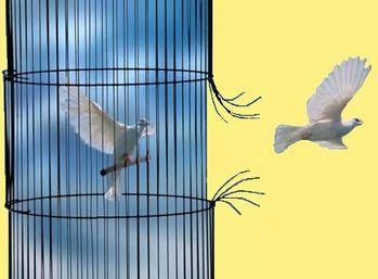 divers liberté 1- 00 art