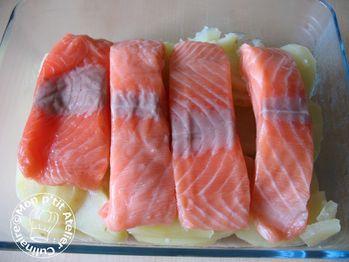 gratin-de-saumon2.JPG