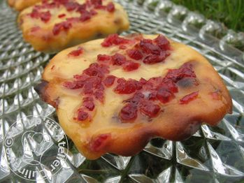 Mini Cheese Cakes aux Cranberries2
