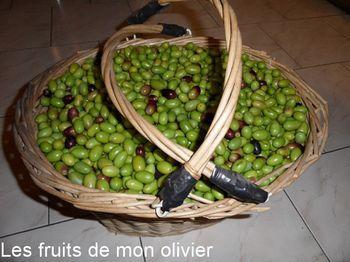 Panier olives 2-border