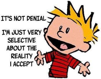 its-not-denial.jpg