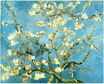 Van Gogh Branche d'amandier en fleurs