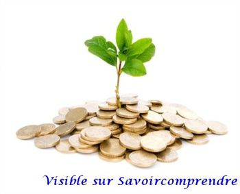 Business-finance-money-plant.jpg