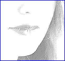 asal-2-s.jpg