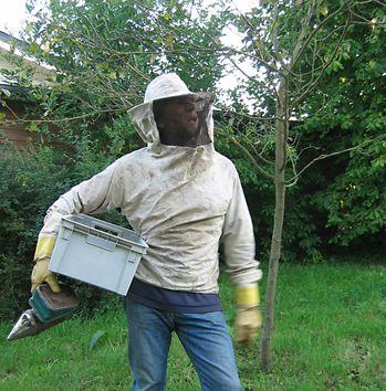 gilles abeilles
