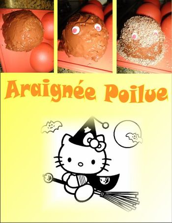 Araignee-Kitty-Affichage-Web-grand-format.jpg